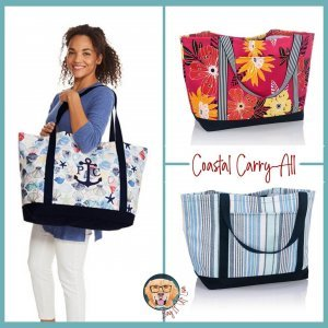 Coastal Carry All   Thirty-One Gifts   Lisa Herttua